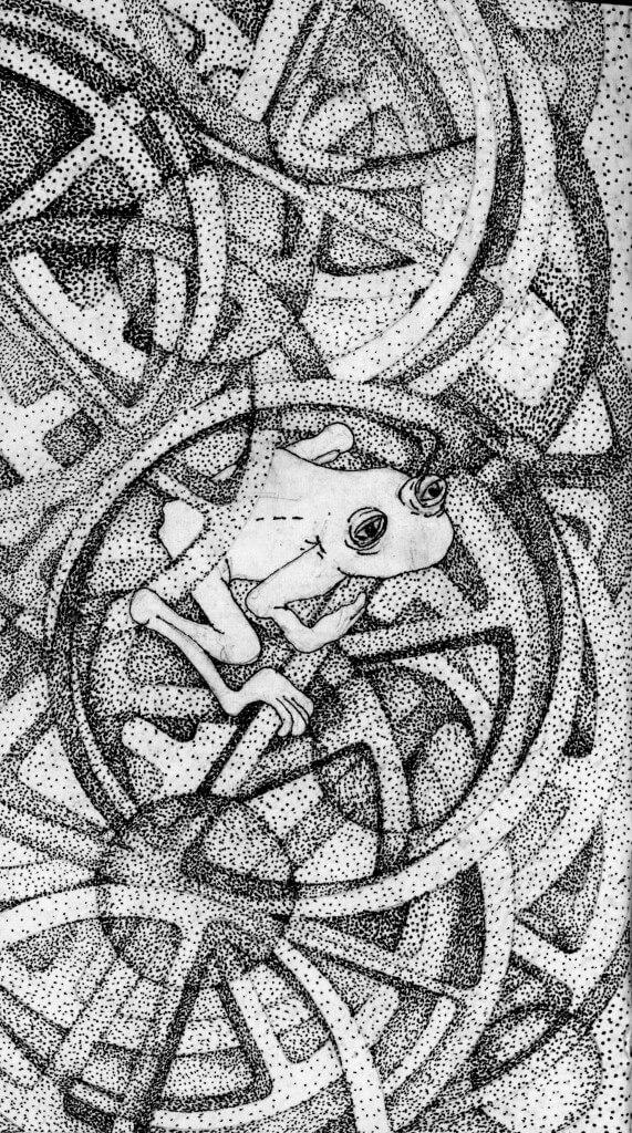 Bonnie Jean Woolger's frog