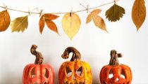 5 fun Halloween craft ideas for kids