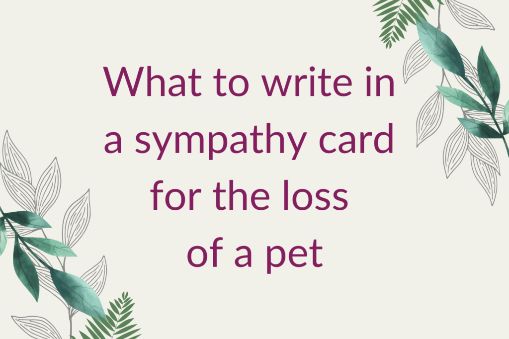 Purple text that says 'What to write in a sympathy card for the loss of a pet', alongside green foliage